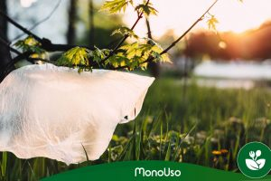 Affiche officielle pour le prix des sacs en plastique 2019