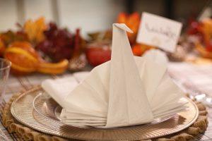 Tutoriel : Comment plier des serviettes en papier et en tissu + 30 plis