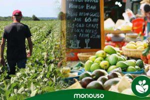 Choisiriez-vous des produits locaux pour votre restaurant ?