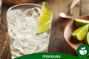 Les meilleurs coupes à Gin Tonic en plastique